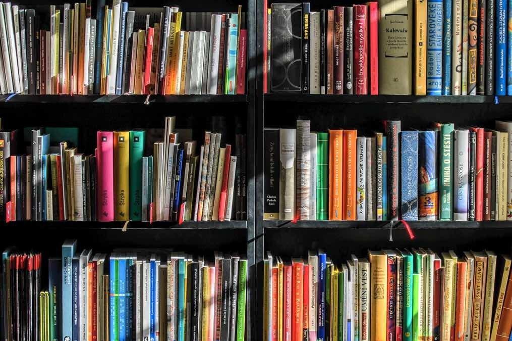 Gestalta en person genom innehållet i hens bokhylla