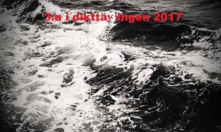 Levodonna – 3:a i dikttävlingen 2017