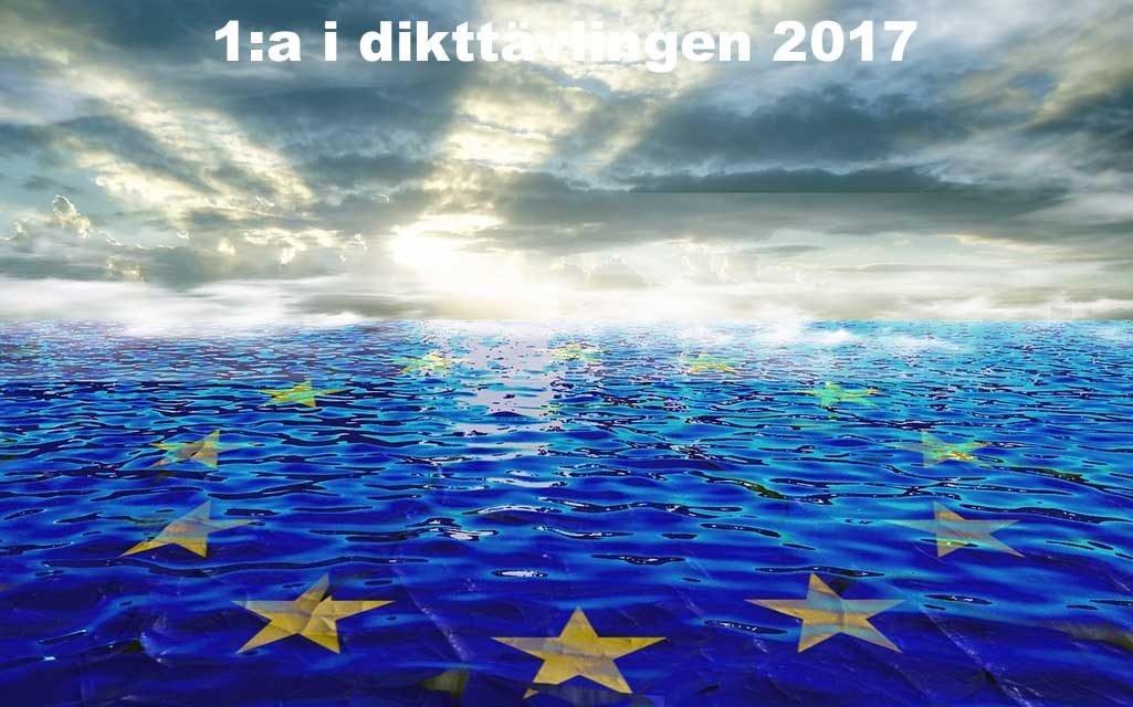Mynt – 1: i dikttävlingen 2017
