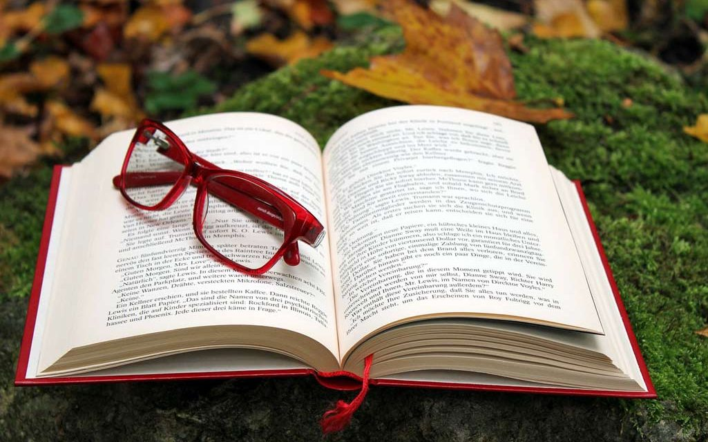 Så läser du för att skriva bättre – del 2