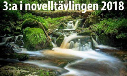 Näcken och homofoben – 3:a i novelltävlingen 2018