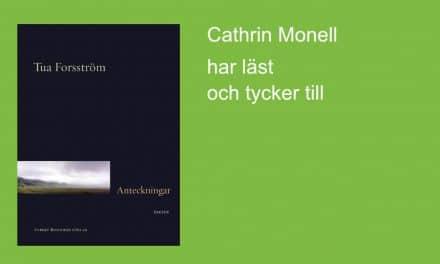 Anteckningar av Tua Forsström