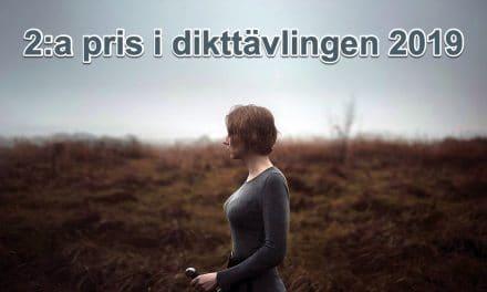 Sköldmön – 2:a pris dikttävlingen 2019